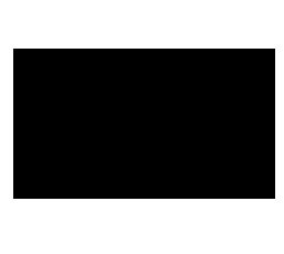 logo Eclectica